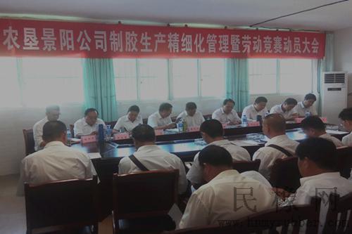 景阳中心幼儿园区域活动工作简报